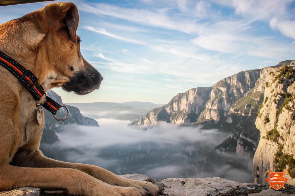 Climbers Forever | Les Demoiselles Aventurières