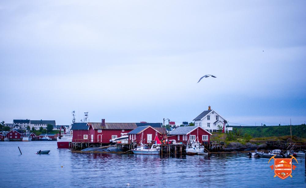Nos petites maisons rouges des Lofotens...